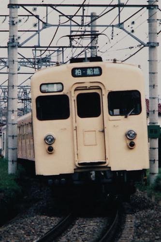 8005.jpg